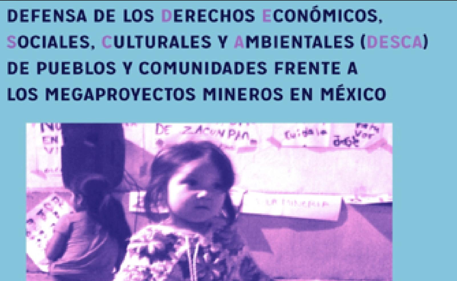 Defensa de los Derechos Económicos, Sociales, Culturales y Ambientales